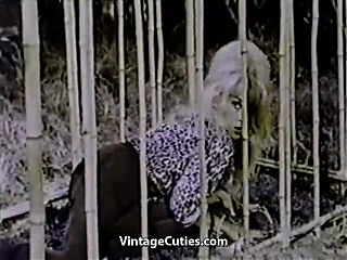 Caged Stipper gets Frenzy in the Jungle (1960s Vintage)